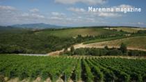 Sarà la DOP Maremma Toscana ad utilizzare, per prima tra le DOP toscane, le tipologie bivarietali in etichetta