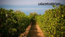 Cammino del Bardolino: 100 km fra Lago di Garda e aziende vitivinicole