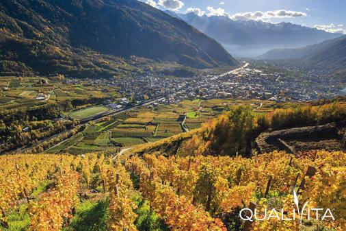 Alpi Retiche IGP foto-1