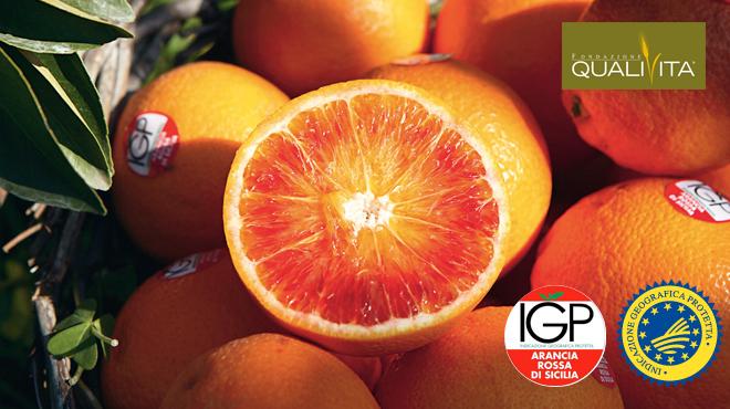 Arancia Rossa di Sicilia IGP, via alla campagna di adesione 2020-21