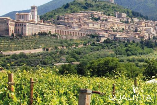 Assisi DOP foto-1