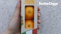 Con le vending-machine le Clementine risorgono