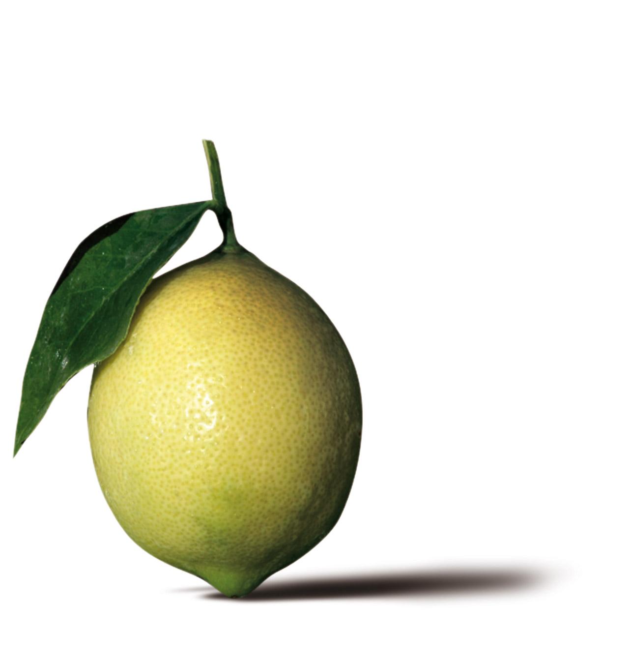 Limone di Sorrento IGP foto-10