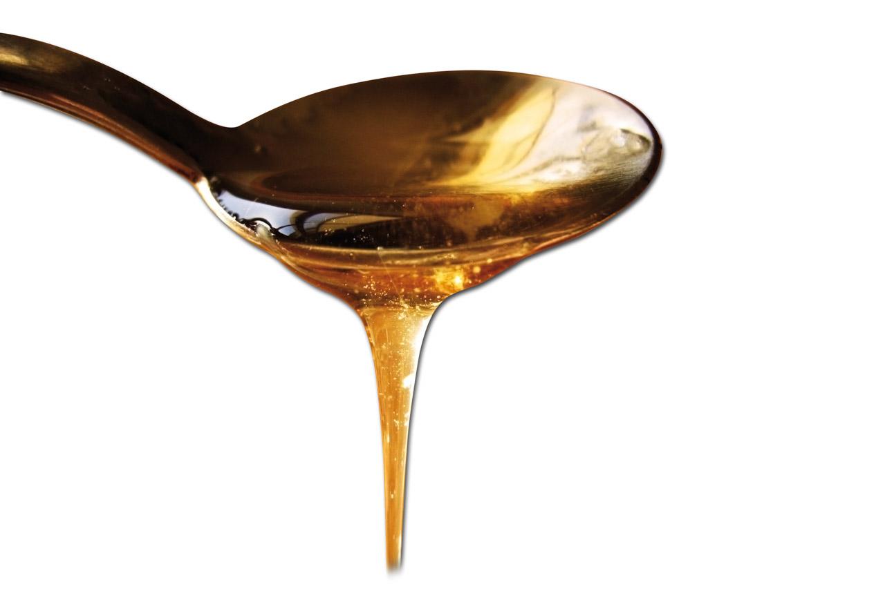 Miele della Lunigiana DOP foto-27
