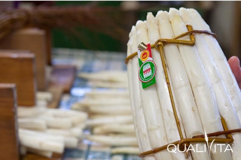 Asparago Bianco di Bassano DOP foto-1