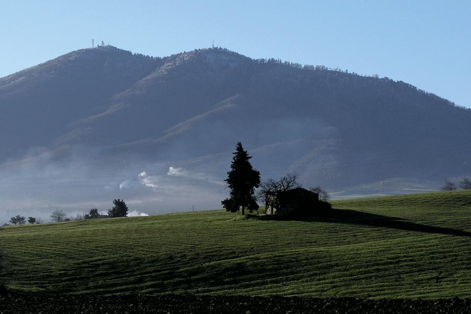 Grignolino del Monferrato Casalese DOP foto-1