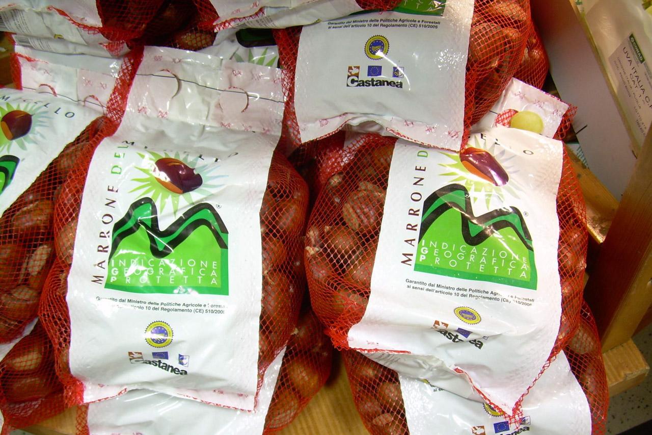 Marrone del Mugello IGP foto-2