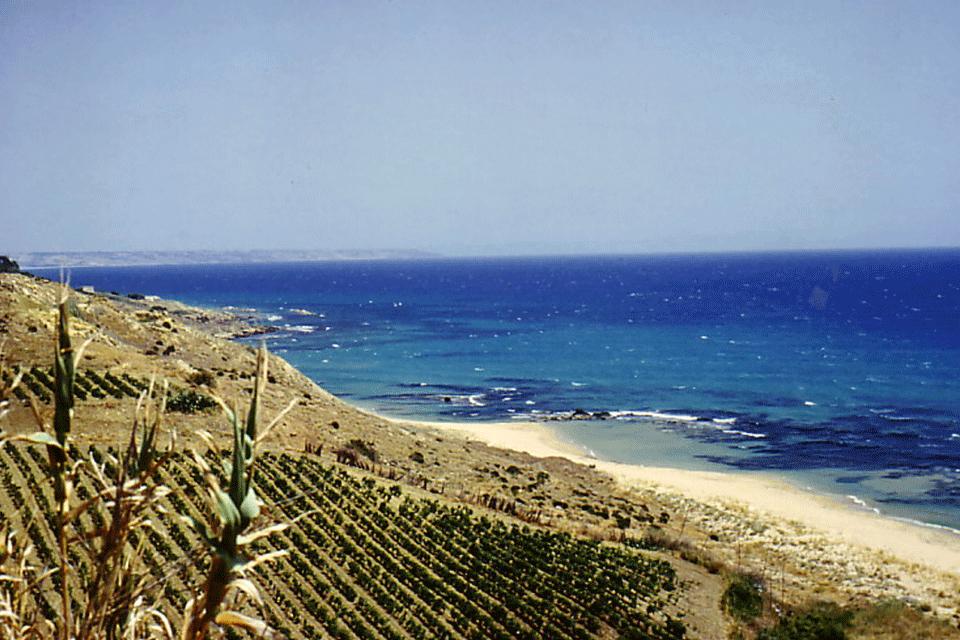 Sicilia DOP foto-1
