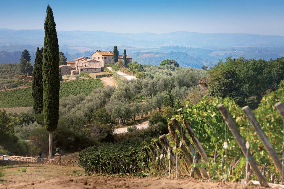 Vin Santo del Chianti Classico DOP foto-1