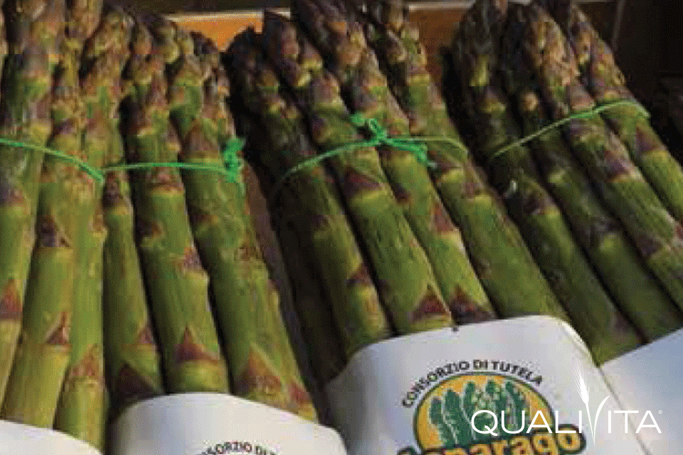 Asparago Verde di Altedo IGP foto-1