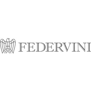 FEDERVINI Federazione Italiana Produttori, Esportatori ed Importatori di Vini, Liquori, Acquaviti, Sciroppi, Aceti ed affini