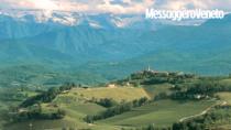 Ribolla Gialla: Friuli a difesa dell