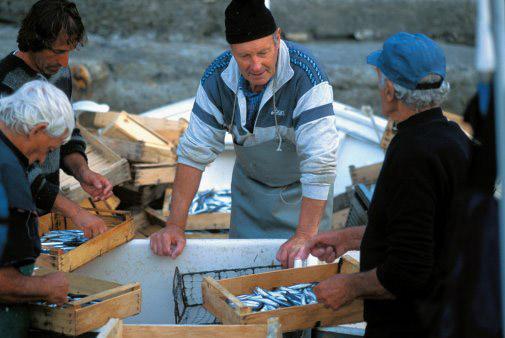 Acciughe Sotto Sale del Mar Ligure IGP foto-2