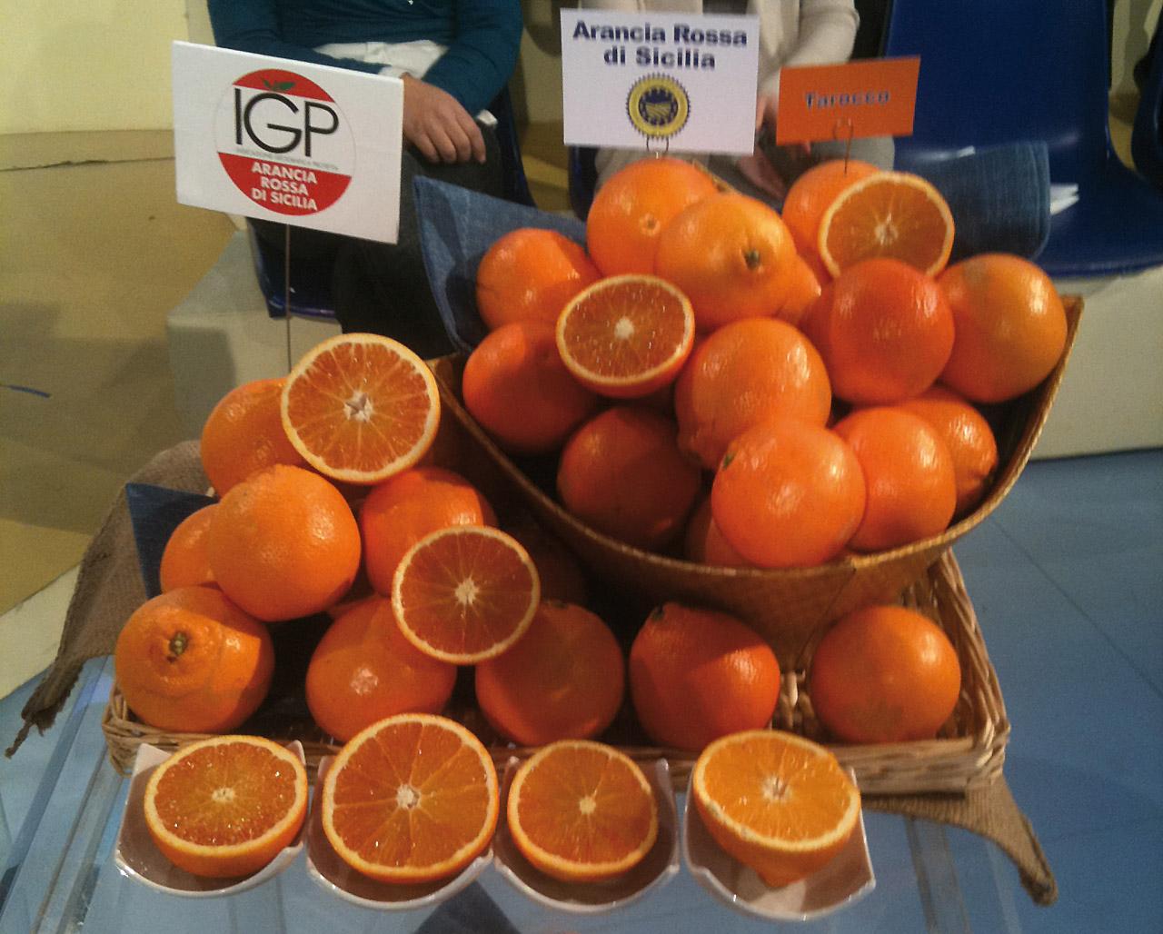 Arancia Rossa di Sicilia IGP foto-18