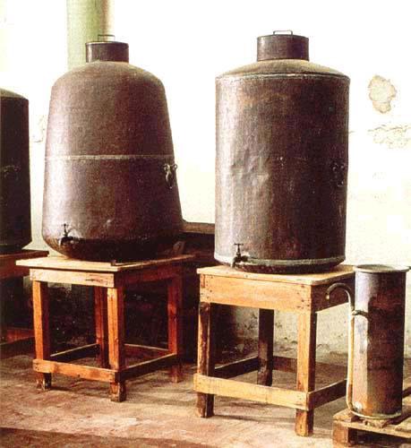 Bergamotto di Reggio Calabria – Olio Essenziale DOP foto-7