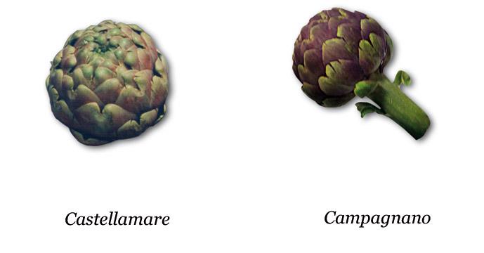 Carciofo Romanesco del Lazio IGP foto-9