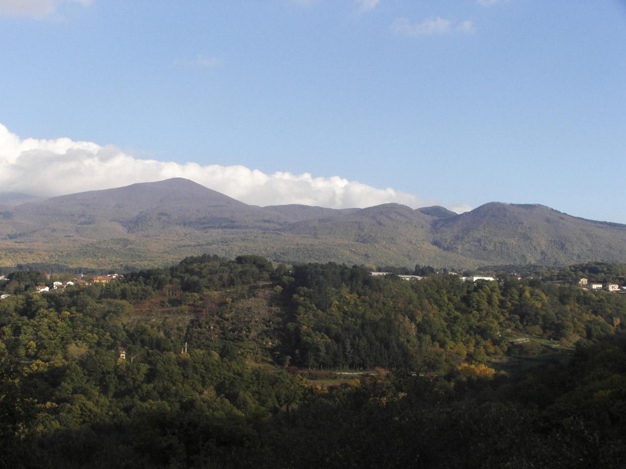 Castagna del Monte Amiata IGP foto-13