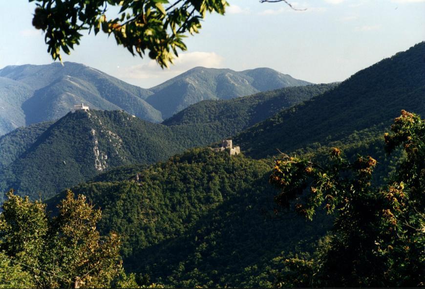 Castagna di Montella IGP foto-12