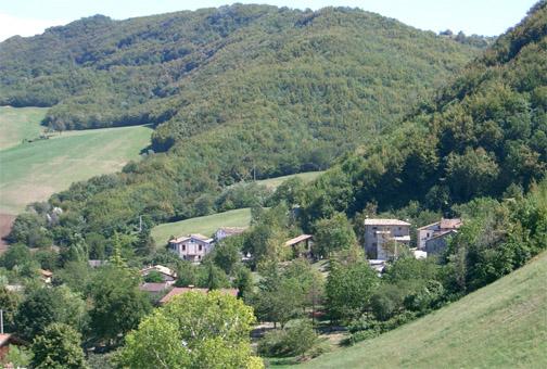 Castagna di Vallerano DOP foto-12