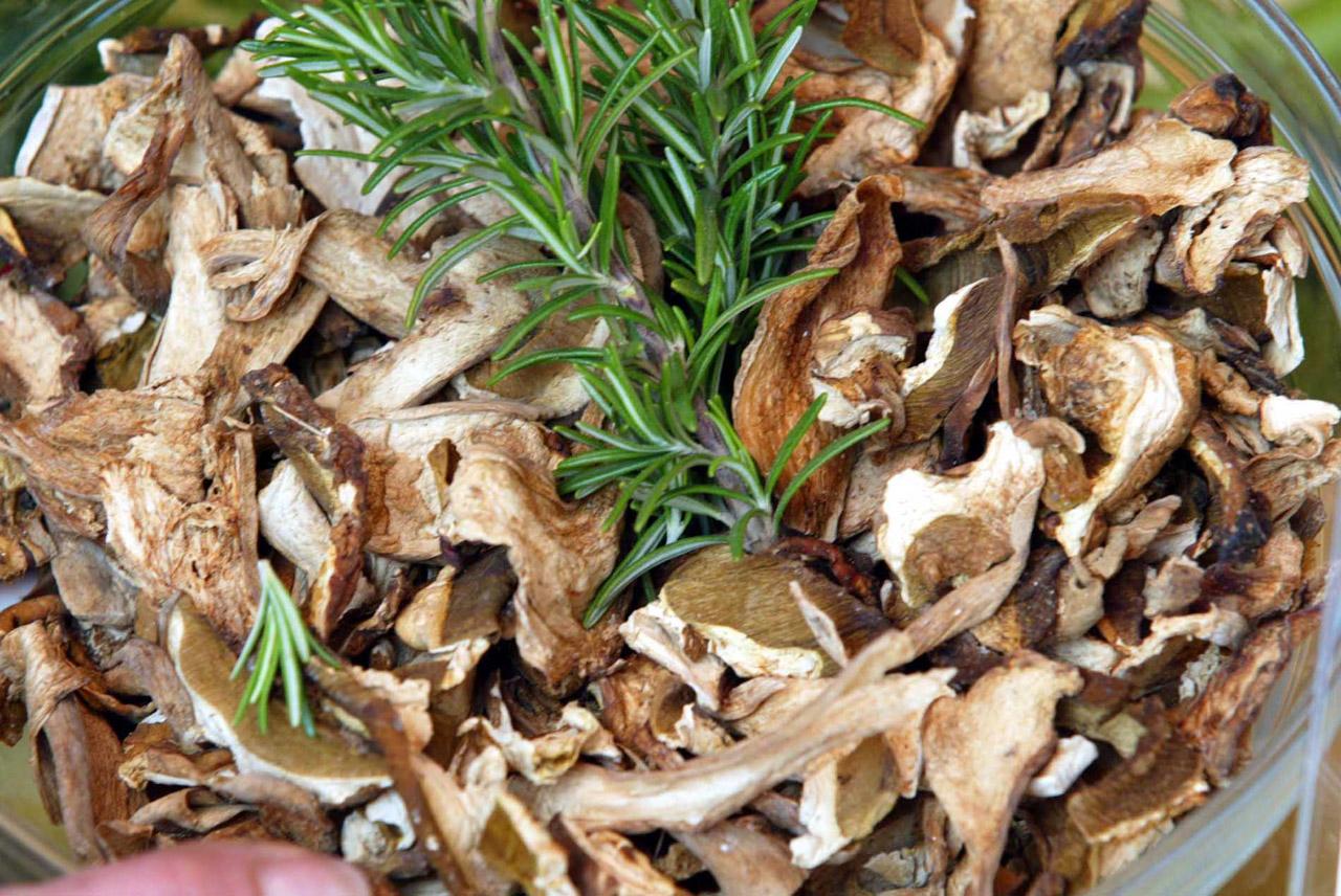 Fungo di Borgotaro IGP foto-12