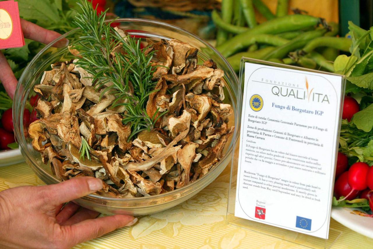 Fungo di Borgotaro IGP foto-14