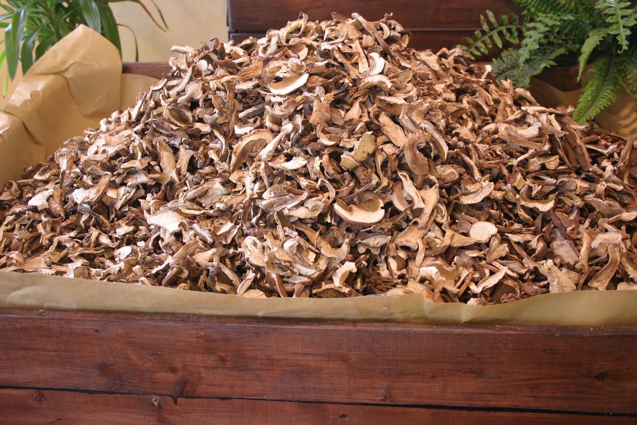 Fungo di Borgotaro IGP foto-11