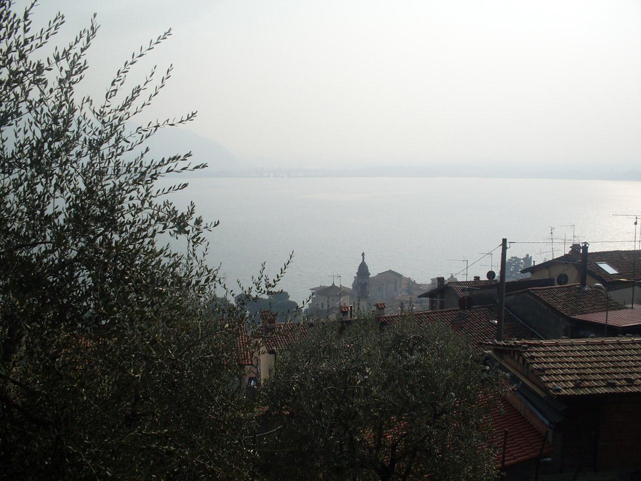 Laghi Lombardi DOP – Olio EVO foto-3