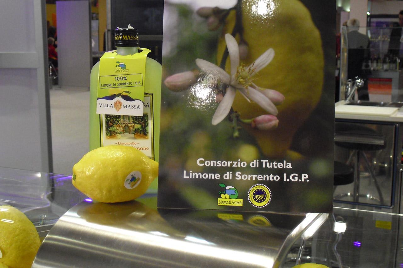 Limone di Sorrento IGP foto-4