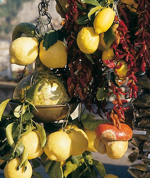 Limone di Sorrento IGP foto-6