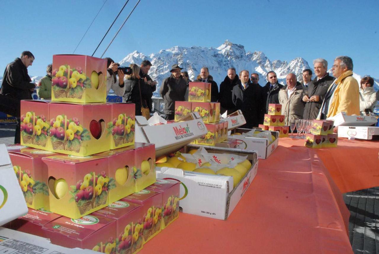 Mela di Valtellina IGP foto-5