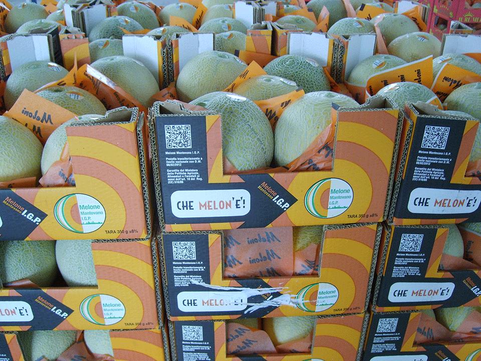 Melone Mantovano IGP foto-4