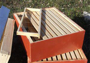 Miele della Lunigiana DOP foto-14