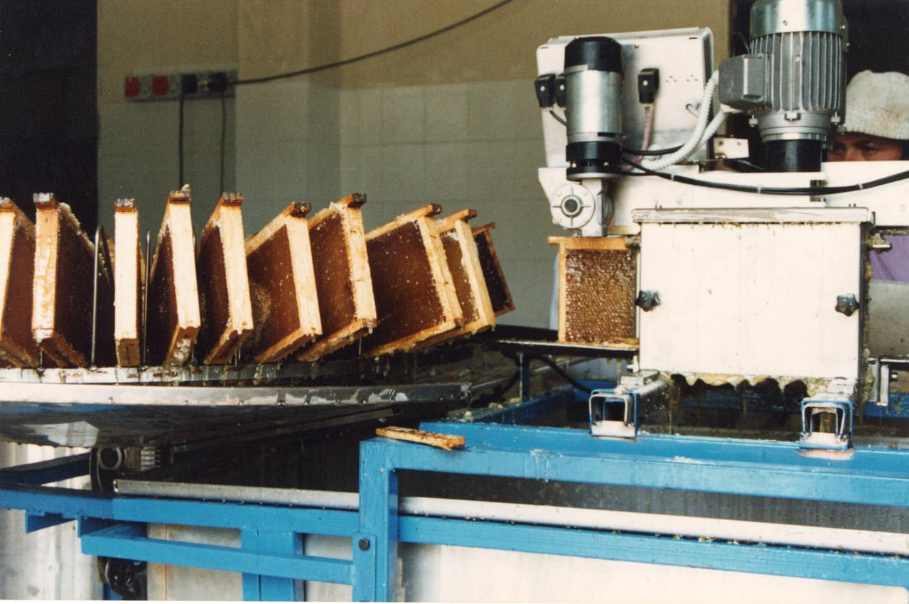Miele della Lunigiana DOP foto-18