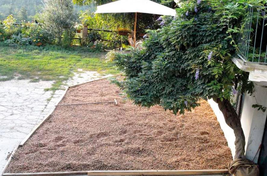 Nocciola del Piemonte IGP foto-6