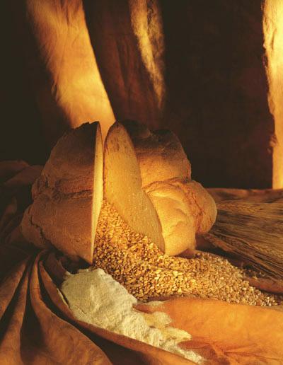 Pane di Matera IGP foto-6