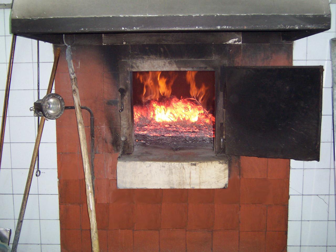 Pane di Matera IGP foto-11