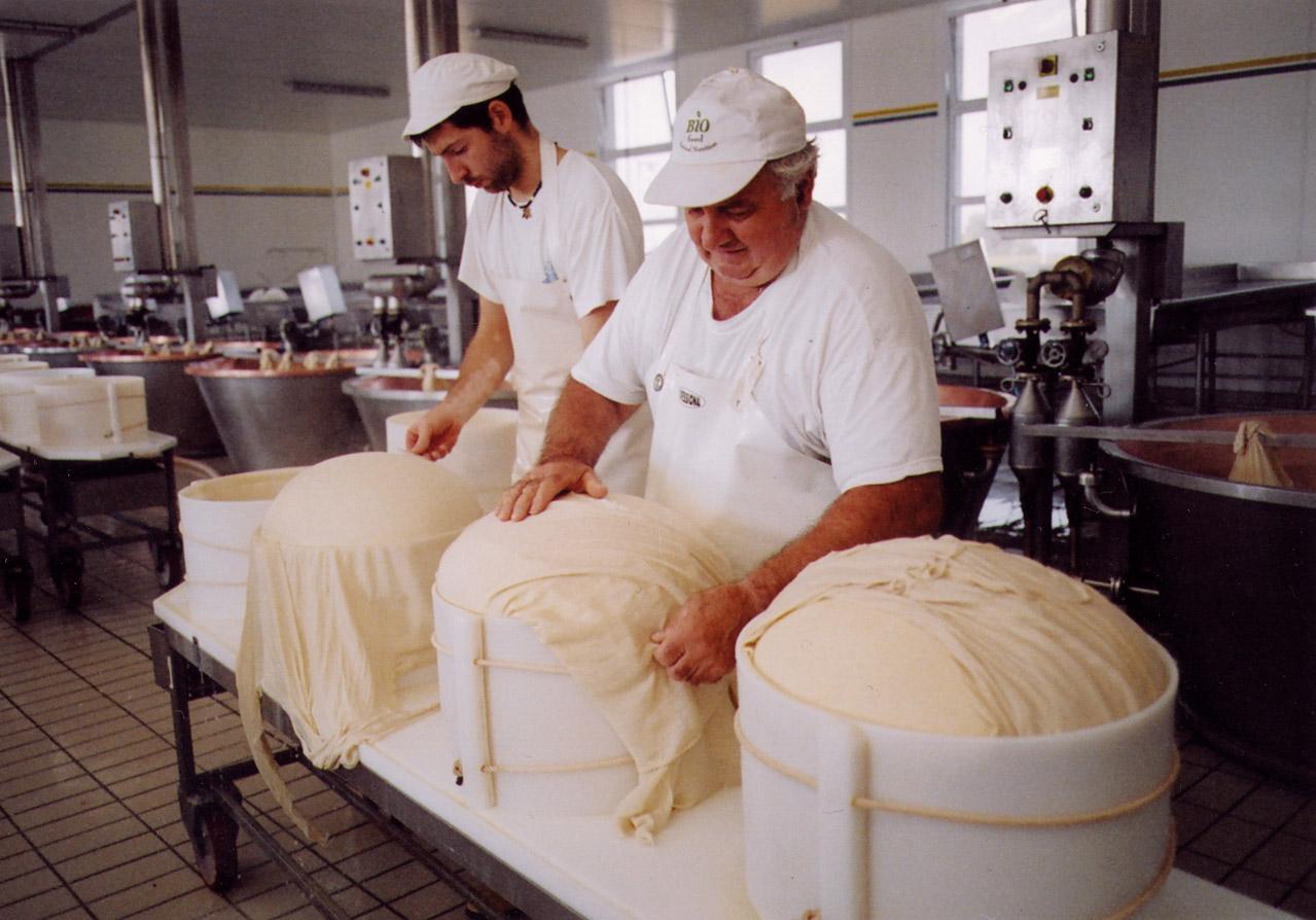 Parmigiano Reggiano DOP foto-15