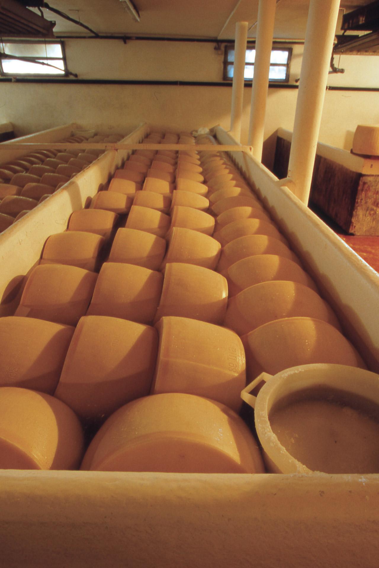 Parmigiano Reggiano DOP foto-18