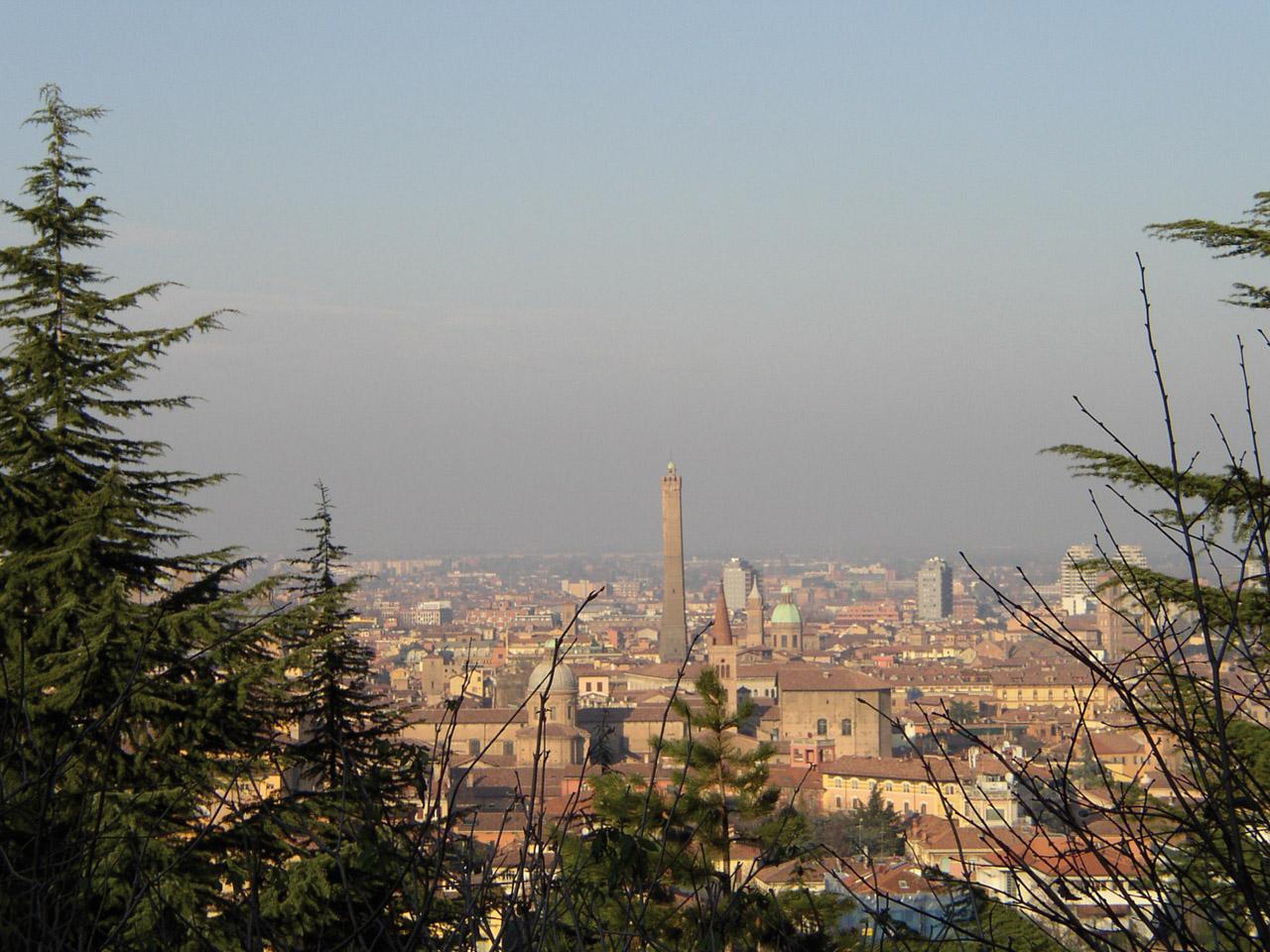 Patata di Bologna DOP foto-6
