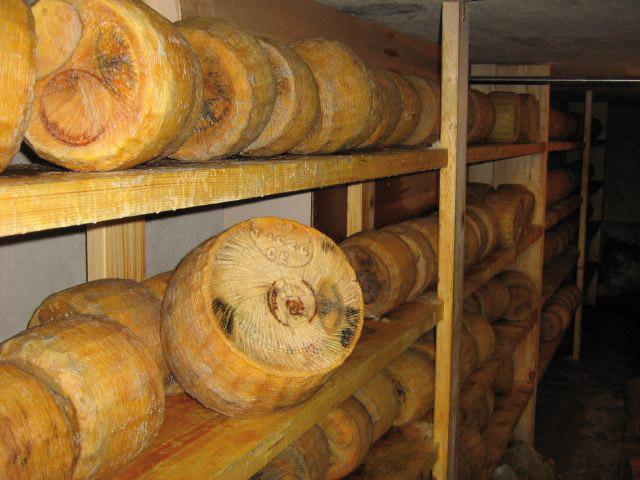 Pecorino Siciliano DOP foto-11