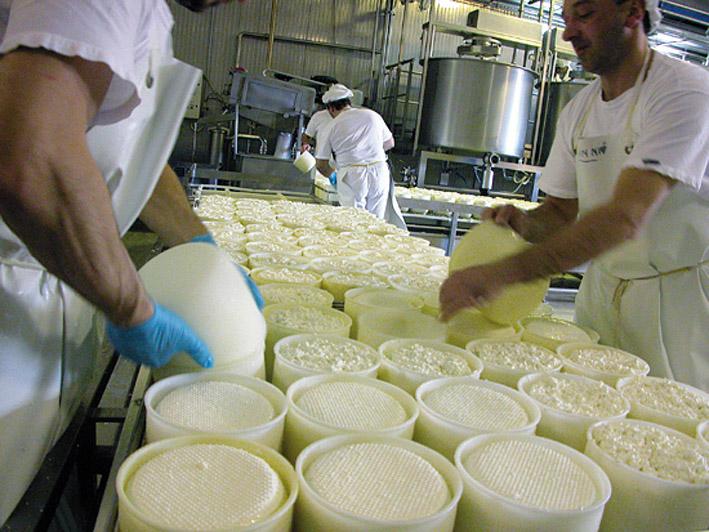 Pecorino Toscano DOP foto-7