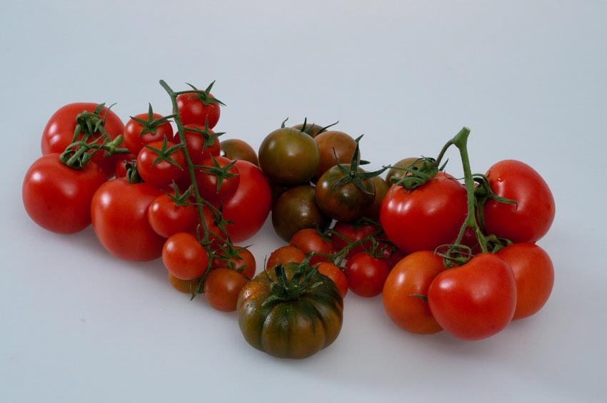 Pomodoro di Pachino IGP foto-9