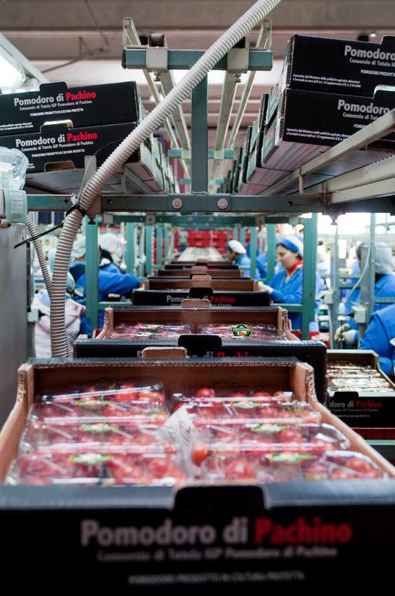 Pomodoro di Pachino IGP foto-12