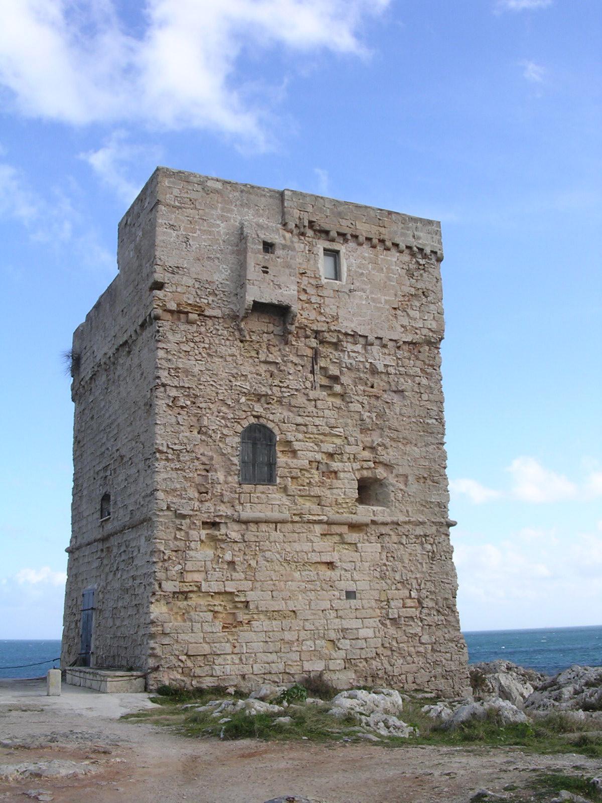Terra d'Otranto DOP – Olio EVO foto-15