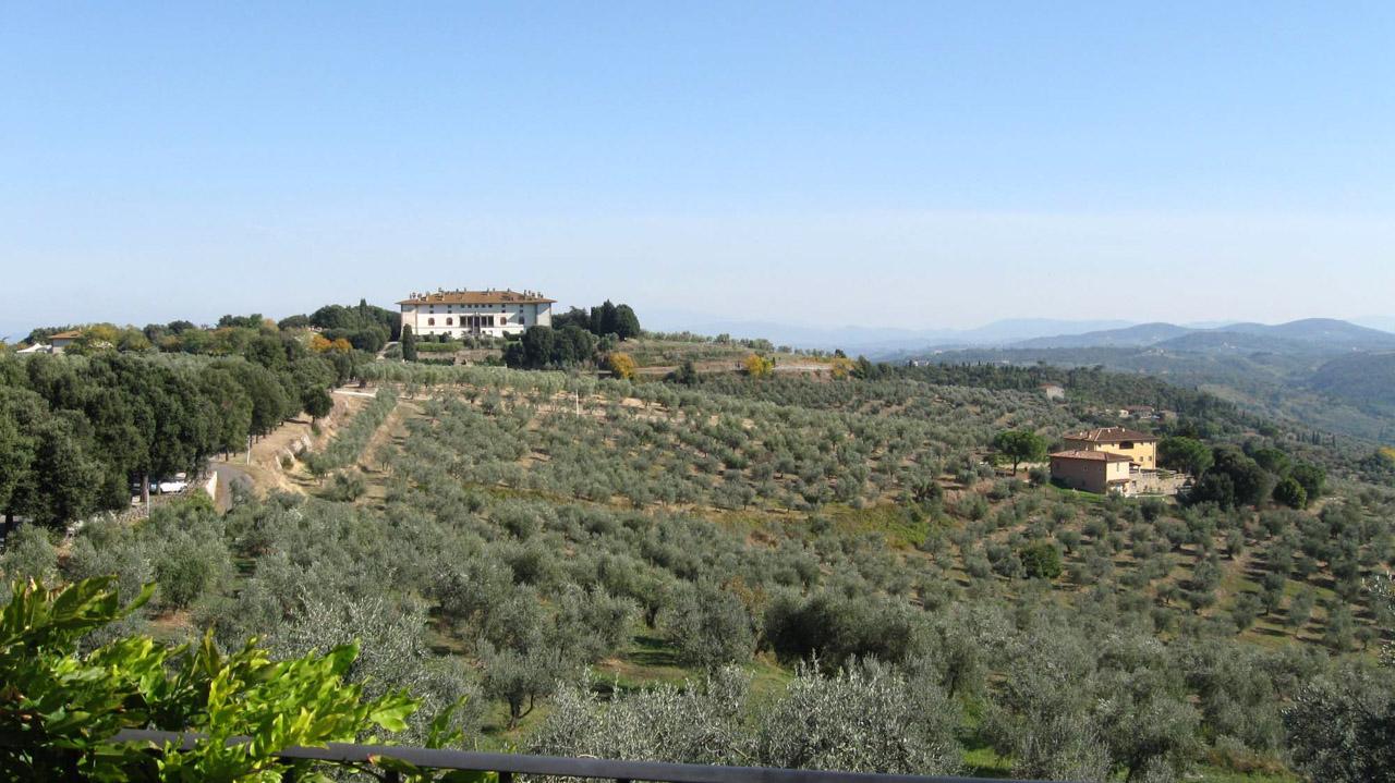 Toscano IGP – Olio EVO foto-4