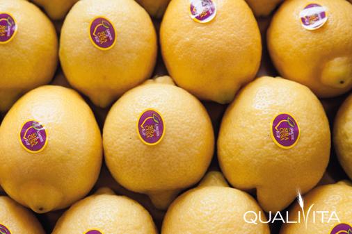 Limone di Siracusa IGP foto-1