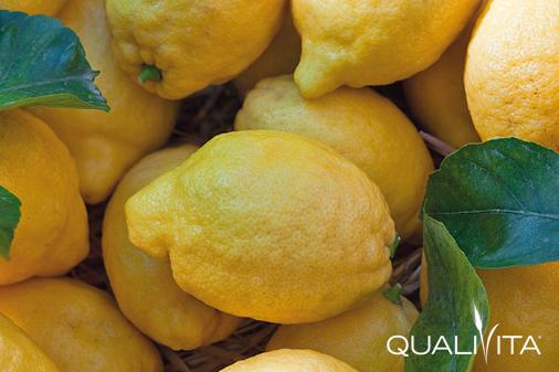 Limone di Sorrento IGP foto-1