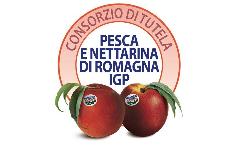 Consorzio Tutela Pesca e Nettarina di Romagna