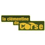 Clémentine de Corse IGP
