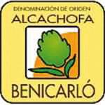 Alcachofa de Benicarló ; Carxofa de Benicarló DOP